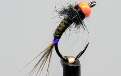 February Fly of the Month